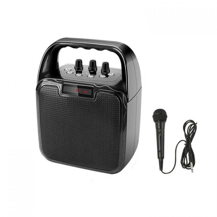 Hot Selling 10W Bluetooth Wireless Amplifier Karaoke Microphone Speaker 2