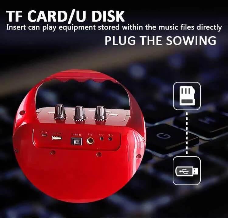 Hot Selling 10W Bluetooth Wireless Amplifier Karaoke Microphone Speaker 5