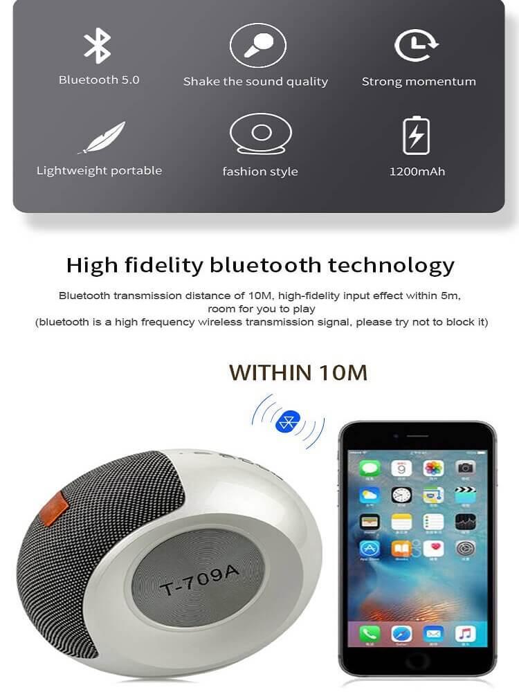 Stereo Bass FM Radio Mini Portable Wireless Bluetooth  Speaker 12